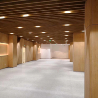 The Ulan Bator's Interior Wall Cladding Case