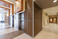 Interior Wall Cladding System